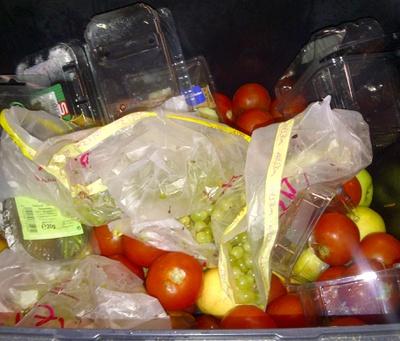 Kuchenabfalle Und Speiseabfalle Entsorgen Wien Und Umgebung Der